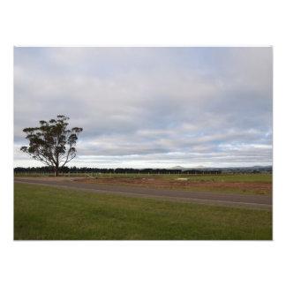 Country Land (Photo Print) Photo Print