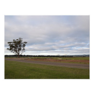 Country Land Photo Print
