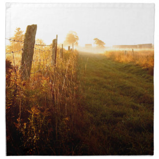 Country Lane, northern Ontario Canada Napkin