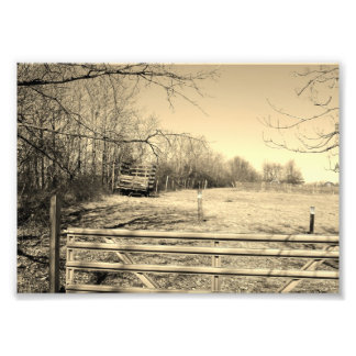 Country Life 7x5 Black and White Photographic Prin Photo