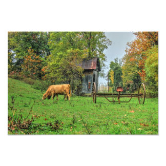 Country Peacefulness Art Photo