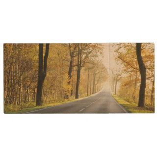 Country Road In Morning Wood USB 2.0 Flash Drive