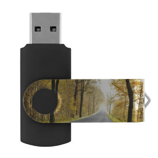 Country Road In Morning Swivel USB 2.0 Flash Drive