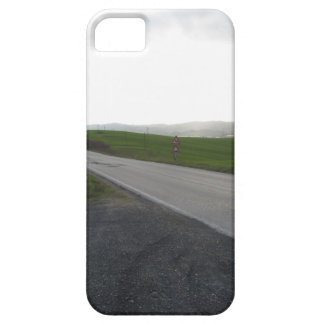 Country road over rolling green hills and valleys case for the iPhone 5