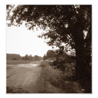 Country Road, Sepia Photo Print