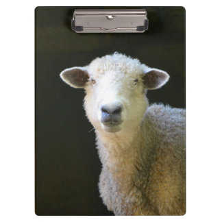 Country Sheep Clipboard
