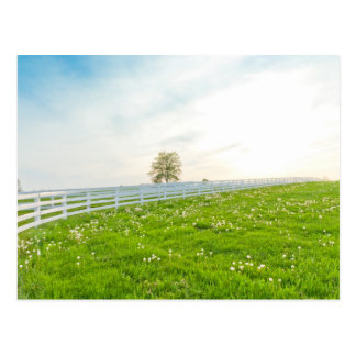 Country spring landscape. postcard