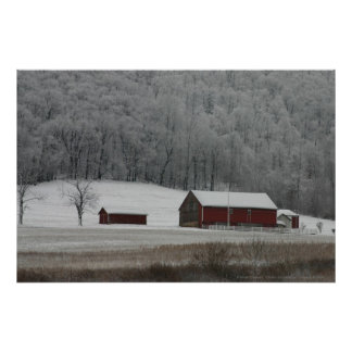 Country View in Winter Poster