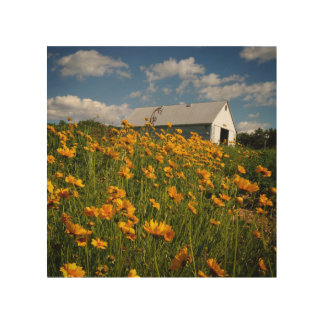 Country Wall Art - Barn with Wildflowers