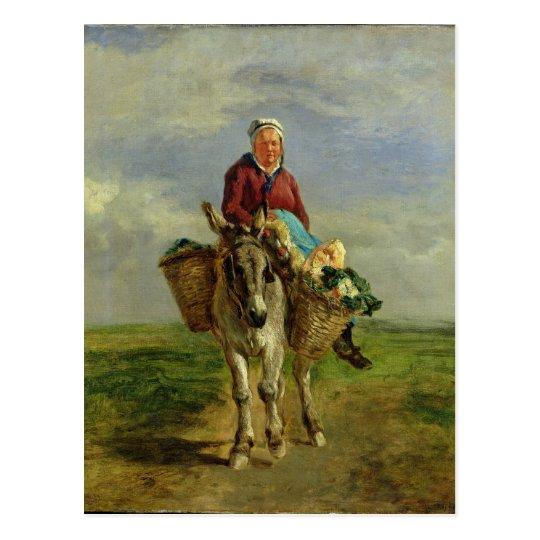 Country Woman Riding a Donkey Postcard