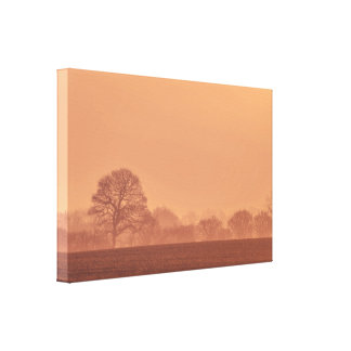 Countryside landscape with tree silhouettes canvas print