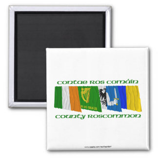 County Roscommon Flags Magnet