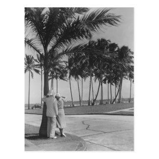 Couple standing at palm tree Rear view B&W Postcard