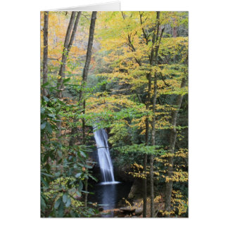 Courthouse Falls Card