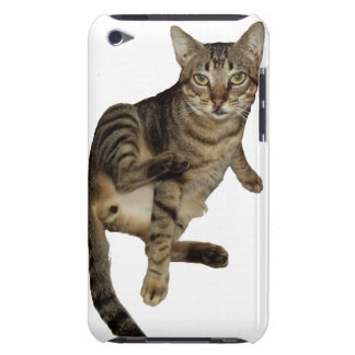 Cover iPod Touch, Barely Charming Cat