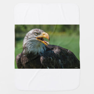 Cover of photo baby of eagle baby blanket