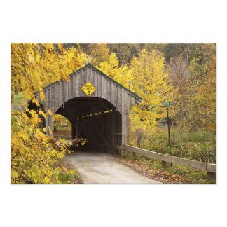 Covered bridge, Vermont, USA 2 Photo