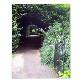 Covered Hedgerow and Garden Gate Photo Art