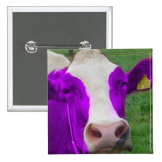 cow 15 cm square badge