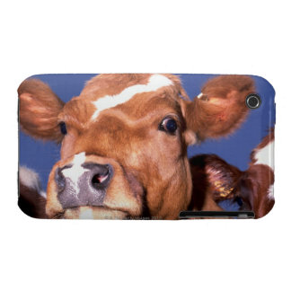 cow 2 Case-Mate iPhone 3 cases