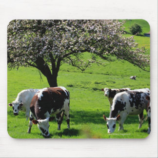 Cow among blooming apple trees in Normandy Mouse Pad