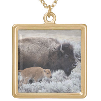 Cow and Calf Bison, Yellowstone 2 Gold Plated Necklace