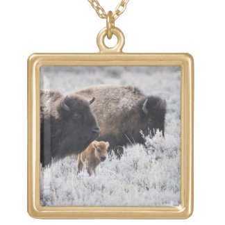 Cow and Calf Bison, Yellowstone Gold Plated Necklace