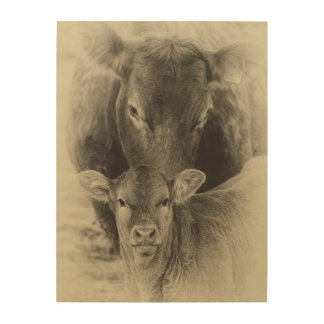 Cow and calf photograph in sepia wood wall art