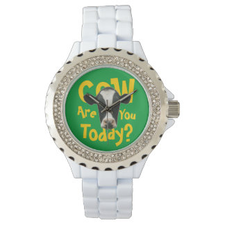 Cow Are You Today Funny Slogan Watches