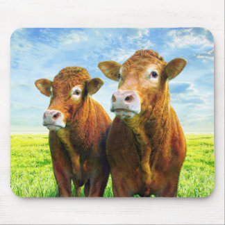 Cow Boys Mouse Pad