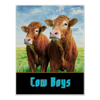 cow boys poster