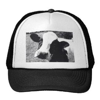 Cow Mesh Hats