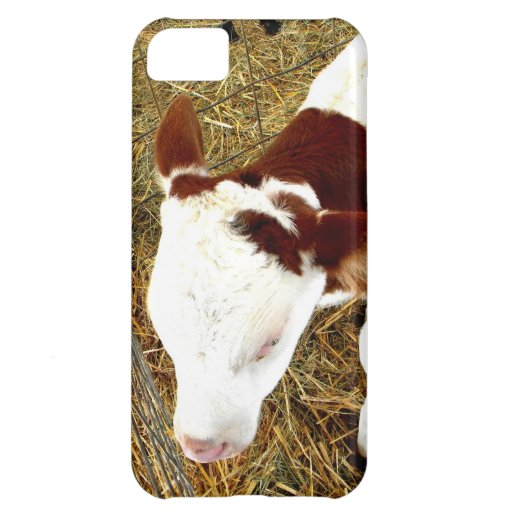 Cow Case For iPhone 5C
