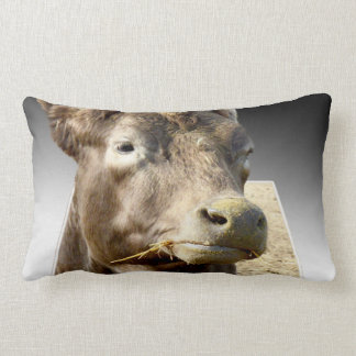 Cow Chewing Hay, Popout Art, Lumbar Cushion. Lumbar Cushion