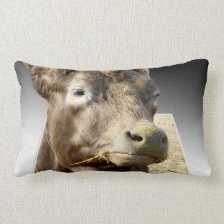 Cow Chewing Hay, Popout Art, Lumbar Cushion. Lumbar Pillow