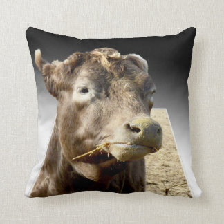 Cow Chewing Hay, Popout Art, Throw Cushion. Cushion