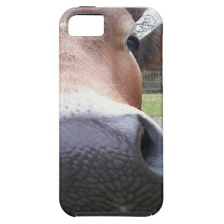Cow Close-up Case For The iPhone 5