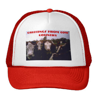 Cow Country Mesh Hats