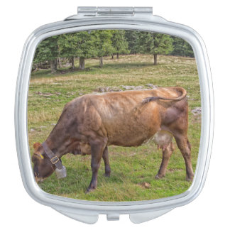 cow eating in a meadow makeup mirrors
