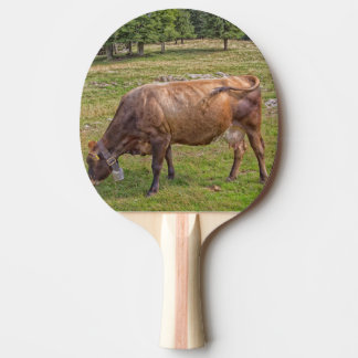 cow eating in a meadow ping pong paddle