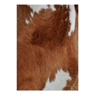 Cow Fur Poster