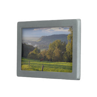 Cow grazes in stunning landscape rectangular belt buckles