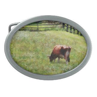 Cow Grazing in Pasture Belt Buckle