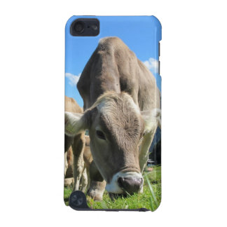 Cow Grazing iPod Tough 5g case