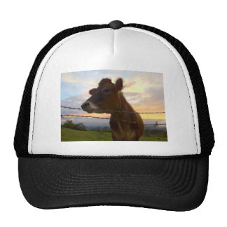 Cow Mesh Hats