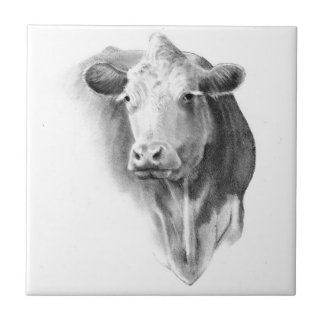 Cow Head in Pencil: Realism Art: Farm, Country Small Square Tile