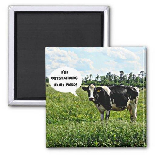 Cow Humor Refrigerator Magnet