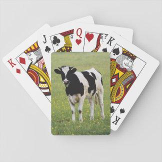 Cow in field of Wildflowers Poker Deck