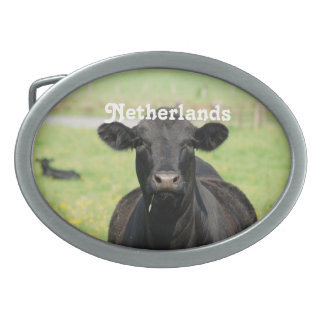Cow in Netherlands Oval Belt Buckles