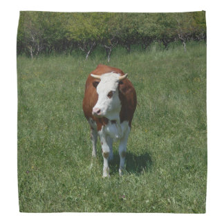 Cow In The Pasture Bandana